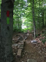 A lot of nice work was done by BRATTS along this trail last year. This is just the start of it, leading down to the pond.