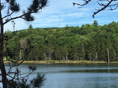 Stopped for a snack break on a rock before heading back, and enjoyed this view of Round Pond with Mt. Belknap in the background (cell tower).