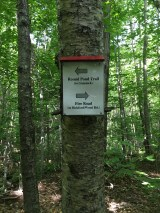 Only a little further to go. Here I changed my out-and-back hike to redline the Fire Road trail.