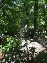 This is the first section of boulder scrambling - just a short section, and not steep.