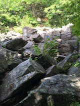This is the second section of boulder scrambling - a little larger and steeper, but in a sunny area.