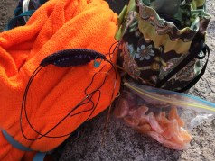 I chose to spend about a half hour on the summit, eating my breakfast of clementines and an oatmeal bar, and knitting a few rows on a sock that will be a pair of hiking socks for my friend Lucy.