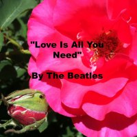 Quote - Love Is All You Need by The Beatles