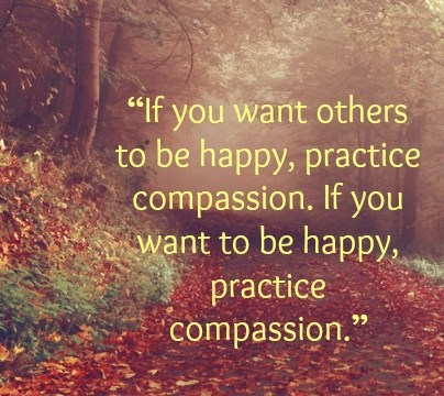 Quote - Practice Compassion by Dalai Lama