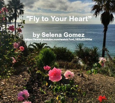 Song - Fly to Your Heart