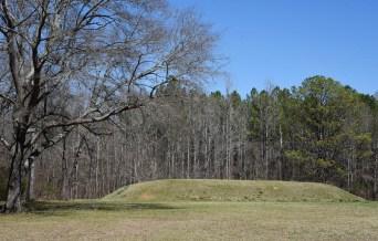 Bear Creek Mound