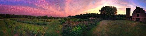 Sunset at LynnVale Farm