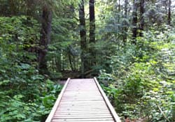 Varley Trail, Lynn Valley
