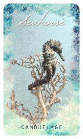 Seahorse - The Ocean Oracle by Lyn Thurman