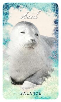 Seal - The Ocean Oracle by Lyn Thurman