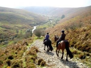 activities-horse-riding