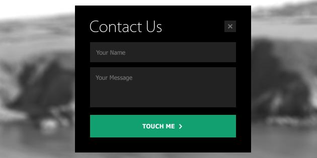 Mini_Metro_Contact_Form