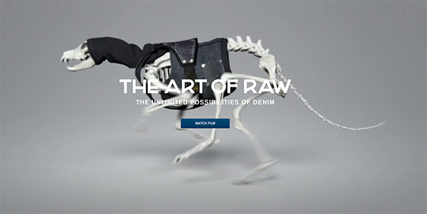 The Art of RAW in 50 Creative Full Screen Video Background Websites