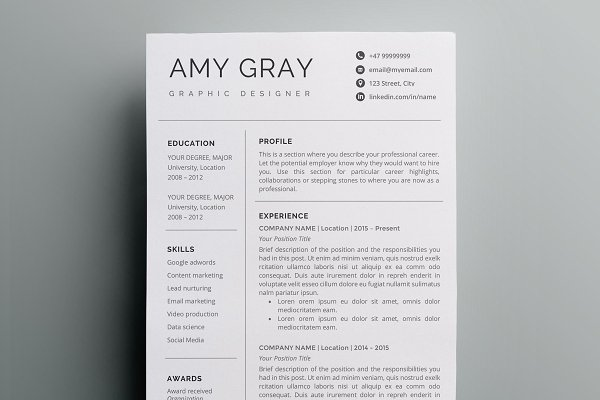 Professional resume template / CV