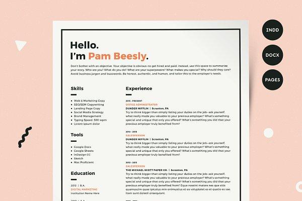 Resume Template CV Kit