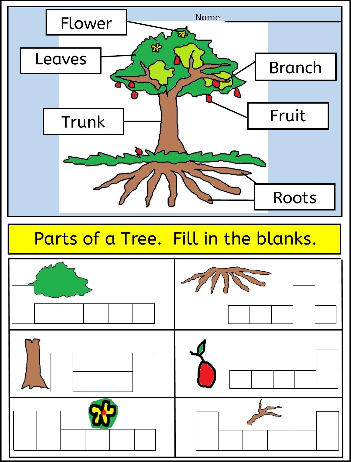 Worksheet Showing Parts Of A Tree