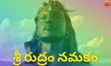 Sri Rudram Namakam lyrics in Telugu pdf with meaning, benefits and mp3 song.