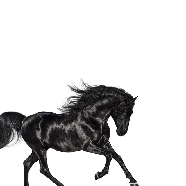 Lil Nas X - Old Town Road (feat. Billy Ray Cyrus) [Remix] Lyrics