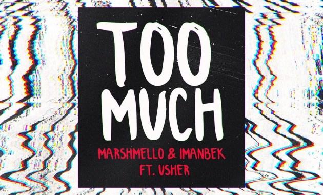 Marshmello & Imanbek - Too Much Lyrics