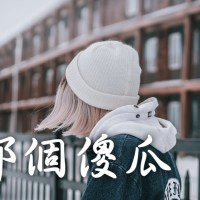 那個傻瓜 Pinyin Lyrics And English Translation