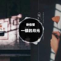 一樣的月光 Pinyin Lyrics And English Translation