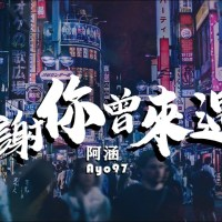 感謝你曾來過 Pinyin Lyrics And English Translation
