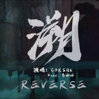Reverse 溯 Pinyin Lyrics And English Translation