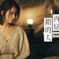 再見錯的人 Pinyin Lyrics And English Translation