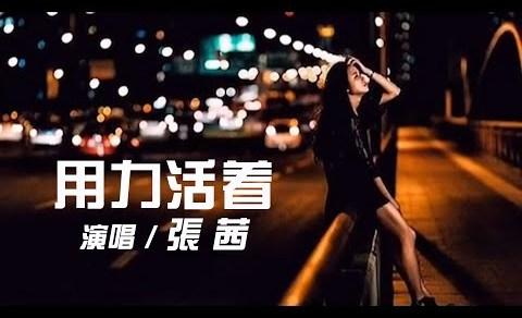 用力活著 Pinyin Lyrics And English Translation