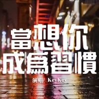 當想你成為習慣 Pinyin Lyrics