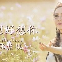 好想好想你 Pinyin Lyrics And English Translation