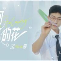 銀河照亮的花 Pinyin Lyrics And English Translation