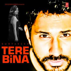 Tere Bina Lyrics Suryaveer