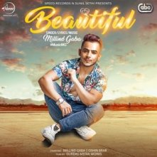 Beautiful sonf lyrics by Millind Gaba
