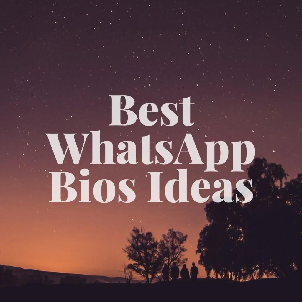 Best whatsApp Bios ideas