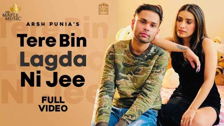 तेरे बिना लगदा ना जी Tere Bina Lagda Na Jee Lyrics In Hindi