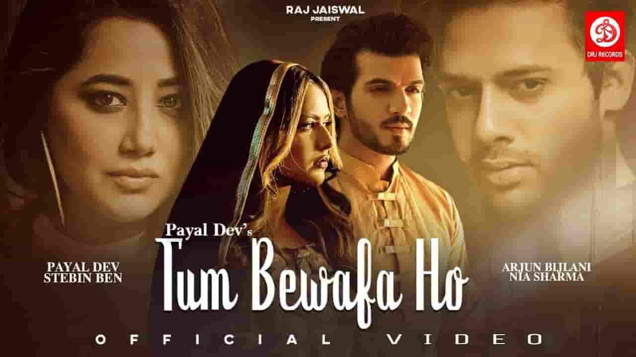 तुम बेवफ़ा हो Tum Bewafa Ho Lyrics In Hindi