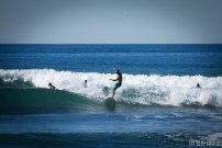surfing swamis w (22 of 61)