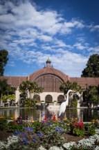 balboa park san diego botanical garden egret