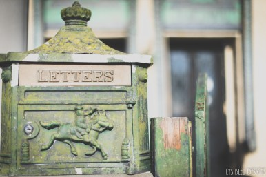 vintage letter box mailbox bird rock