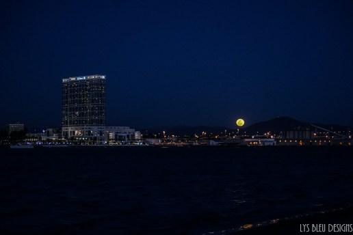full moon - san diego photos - san diego skyline - night photography - landscape photography