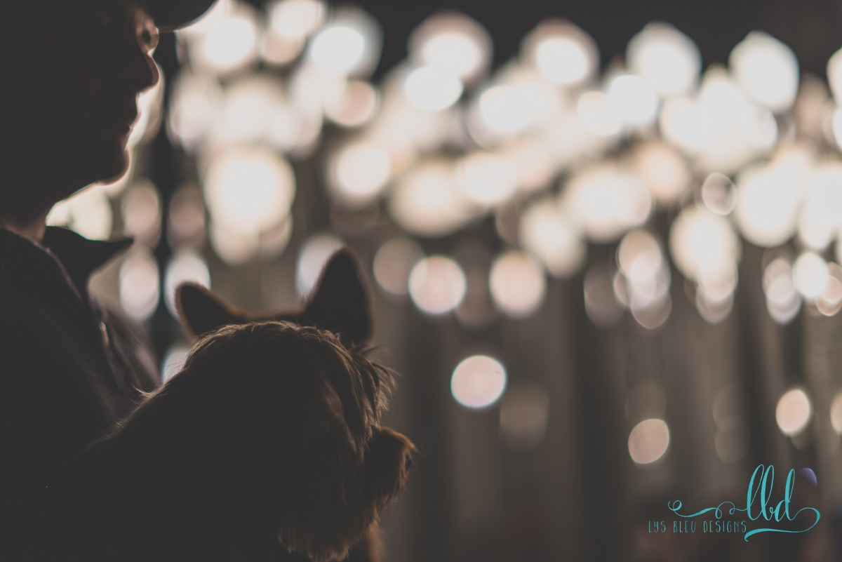 urban light - lacma - los angeles - bokeh - fine art photography