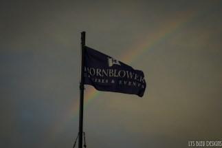 hornblower w (111 of 113)