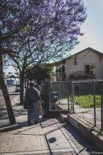 barrio logan w (114 of 150)