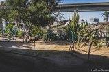 barrio logan w (64 of 150)