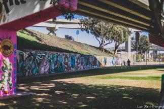 barrio logan w (77 of 150)
