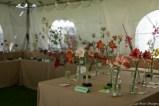 coronado flower show w (10 of 240)