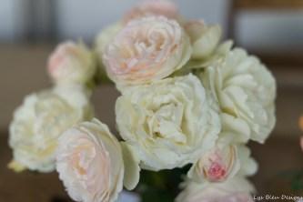 coronado flower show w (173 of 240)