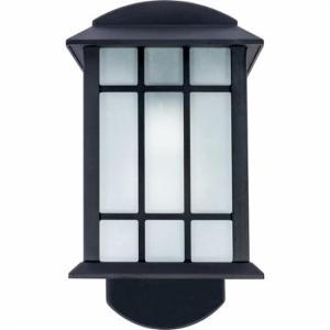 Craftsman Companion Smart Security Black Metal and Glass Outdoor Light Fixture