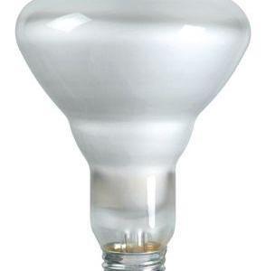 Philips Lamps 65BR/FL60/LL 120V 8PK TP